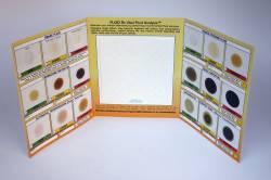 Vital Fluids Analysis Report Card - Image 2