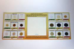 Vital Fluids Analysis Report Card - Image 3